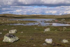 015_Hardangervidda-1