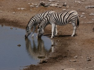 02_Namibia_Arno.Bokeloh
