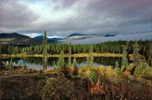 12Morgenstimmung-Yukon