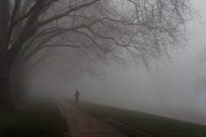 03_Nebel