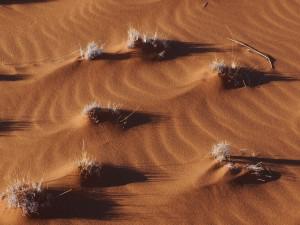 01_Namibia_Arno,Bokeloh